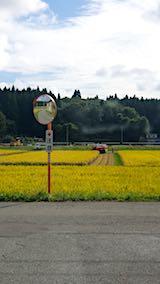 20180916山へ向かう途中の様子田んぼと空稲刈り2