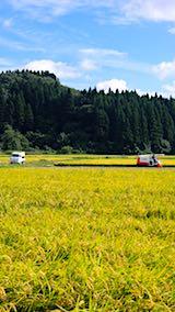 20180916山へ向かう途中の様子田んぼの稲刈り3