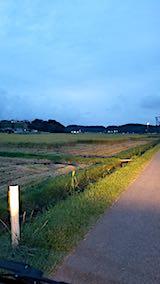 20180916山からの帰り道の様子田んぼ2