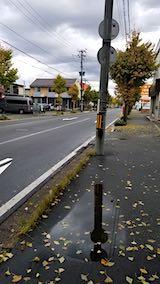 20181012外の様子朝歩道1
