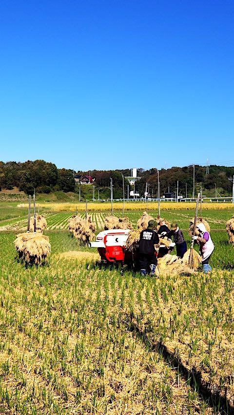 20181014山へ向かう途中の田んぼ脱穀作業