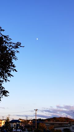 20181017速歩途中の公園から望んだお月さま