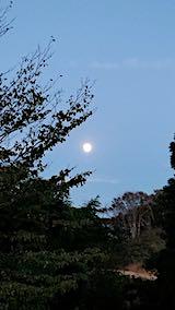 20181022山の様子お月さま