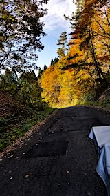 20181108山からの帰り道の様子峠道の紅葉2