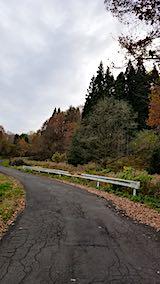 20181116山へ向かう途中の様子峠道1