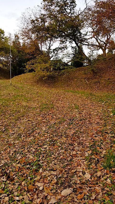 20181116ラベンダーの畑へと続く急な坂道の様子枯れ葉