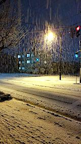 20181213外の様子夜遅く雪が降り続く1