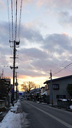 20190104外の様子夕方ケヤキの木2