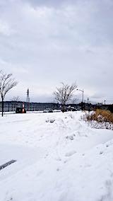 20190107外の様子昼前太平山2