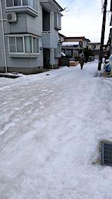 20190109外の様子昼前テカテカ道路1