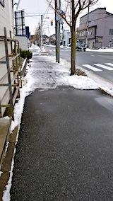 20190119外の様子昼前歩道1