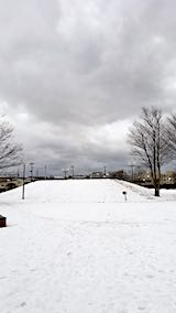 20190131速歩へと向かった公園の様子