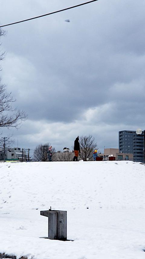 20190131速歩途中の公園内の様子