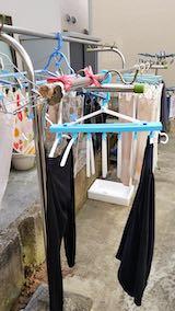20190310洗濯物を外へ干す2