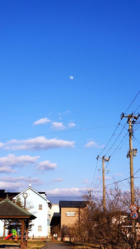 20190318速歩途中の公園から望んだ東の空お月さま