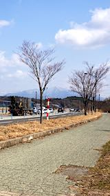 20190320外の様子昼前太平山