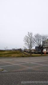 20190330速歩へ向かった公園内と南西の空