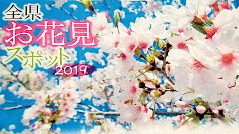 20190403全県お花見スポット2018