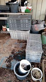 20190410山の入り口の作業小屋整理後4