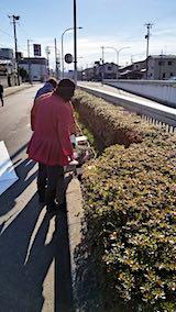 20190414町内会でラベンダーの植栽作業2