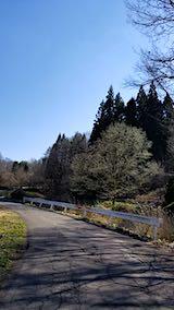 20190416山へ向かう途中の峠道