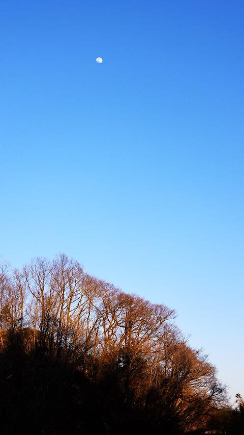 20190416山の様子真っ青な空とお月様