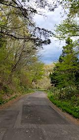 20190506山からの帰り道の様子峠道1