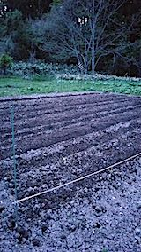 20190507野菜畑うね作り2