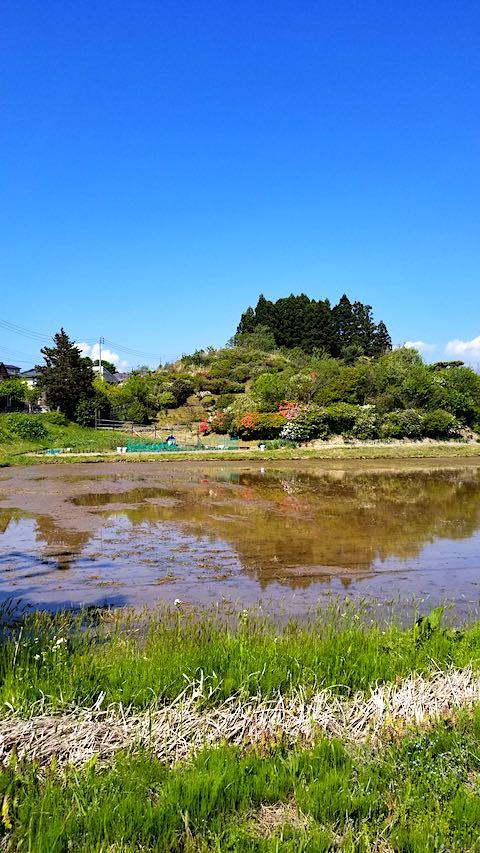 20190517ツツジの咲く丘の風景