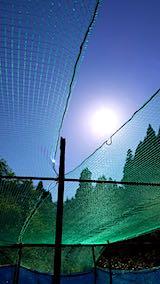 20190517野菜畑の屋根用ネット張り作業1