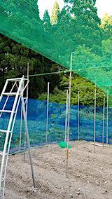 20190517野菜畑の屋根用ネット張り作業2