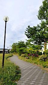 20190531速歩途中の公園内