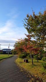 20191026速歩途中の公園内の紅葉と南の空