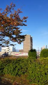 20191026速歩途中の公園内の紅葉とこまち号