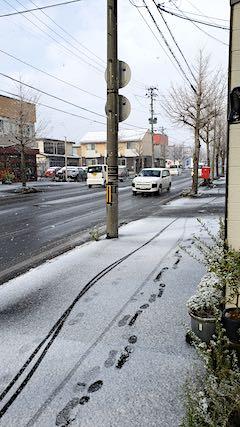 20191129外の様子昼過ぎ積雪4