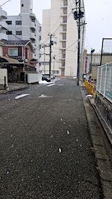 20200105外の様子昼前大粒の雪が
