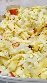 20200109お昼ご飯ハクサイと皮付きリンゴのサラダ