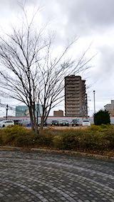 20200109速歩の公園と西の空と秋田新幹線