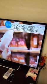 20200214NHKテレビ青森藍1