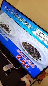 20200214NHKテレビ青森藍5