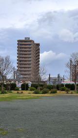 20200405速歩途中の公園内と西の空秋田新幹線こまち号