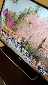 20200318NHKテレビ三月の平均気温秋田市6.4度