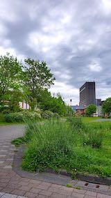 20200519速歩途中の公園内と北の空
