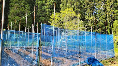 20200522野菜畑の梁を固定する作業の再開