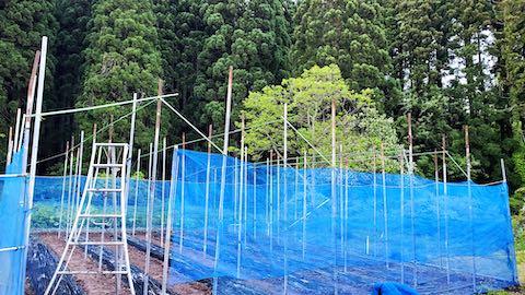 20200522野菜畑の梁を固定する作業