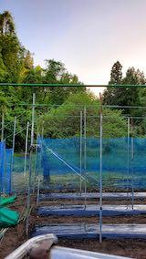 20200522野菜畑の梁を固定する作業3