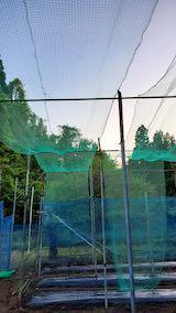 20200522野菜畑の梁を固定する作業1