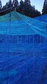 20200522野菜畑の梁を固定する作業2