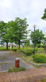 20200607速歩途中の公園内の様子草刈り済み1