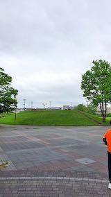 20200701速歩へ向かった公園内と南西の空